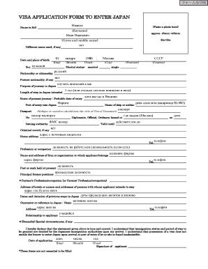 online visa application form russia