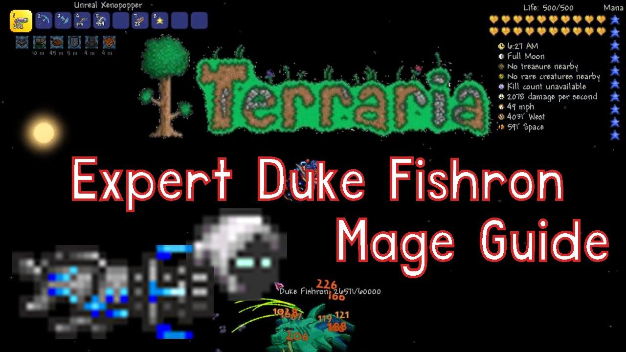 terraria mage guide